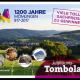 1200_tombola_los